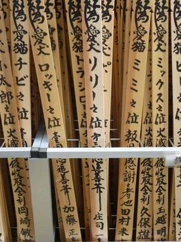 りりちゃんの3回忌2012年 025.JPG