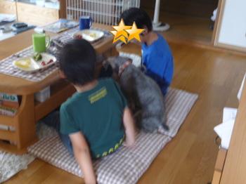圭翔と悠翔とメグ 003.JPG