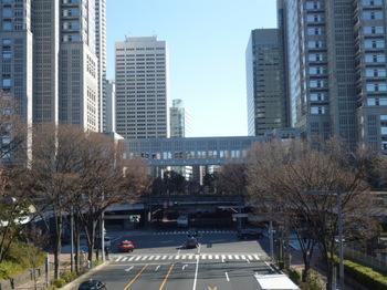 新宿中央公園散歩 001.JPG