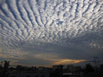 秋の雲2012年10月 004.JPG