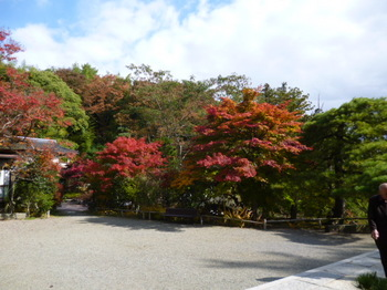紅葉2012年秋信州の 163.JPG