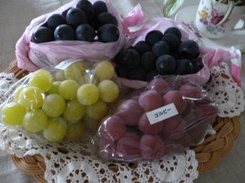 葡萄とメグ 001.JPG