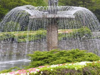 2012年昭和記念公園と花めぐり(3) 071.JPG