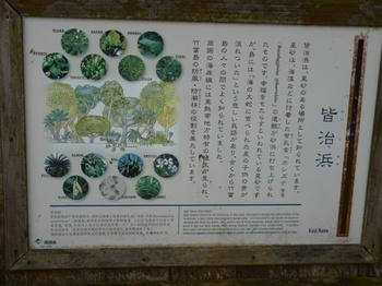 2012年石垣島旅行 198.JPG